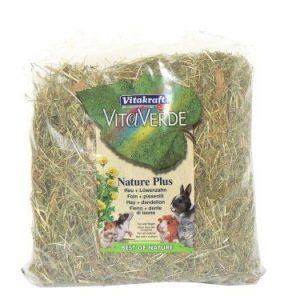 dandelion hay