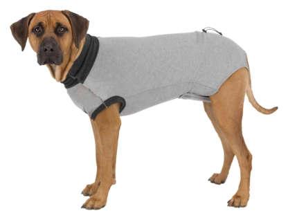 Dog Post Surgery Suit