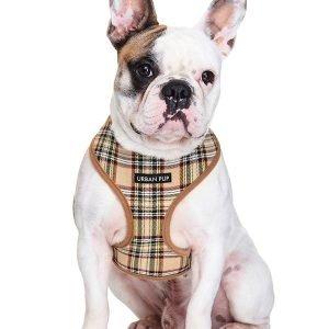 urban pup harness