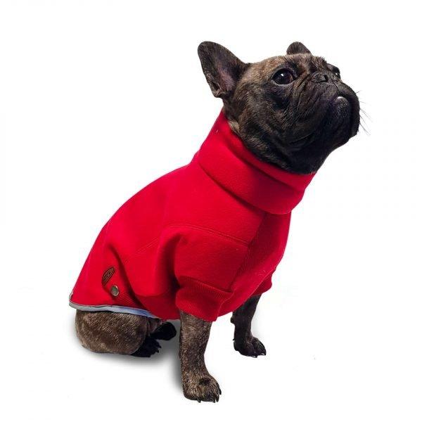 dog fleece
