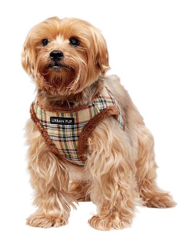 urban pup dog harness