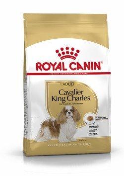 royal canin king charles