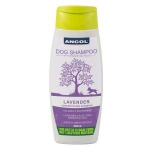 lavender dog shampoo