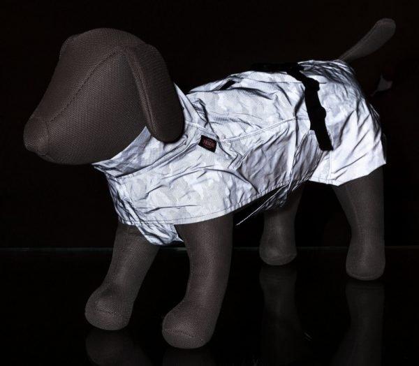 hi-visibility dog raincoat