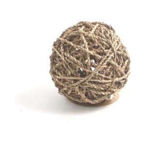 fun ball for small pets