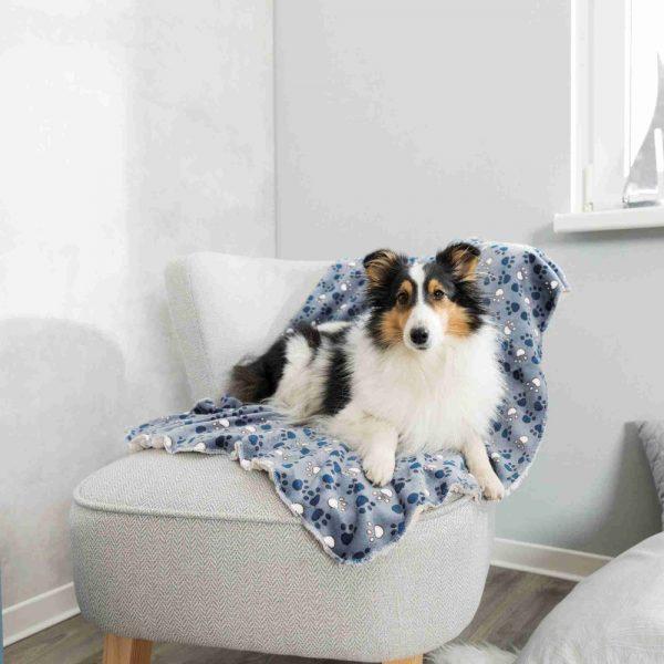 soft blanket for pets