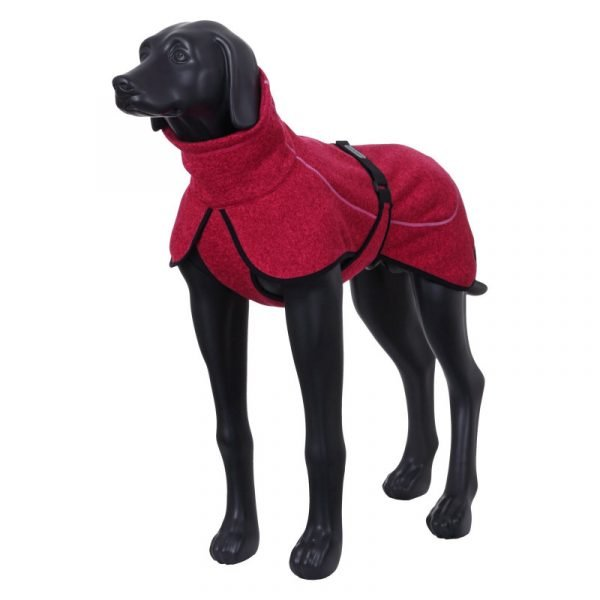 jacket for dogs