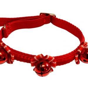 christmas collar for dogs