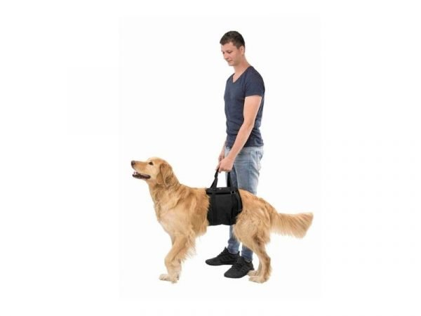 lifting aid for dogs