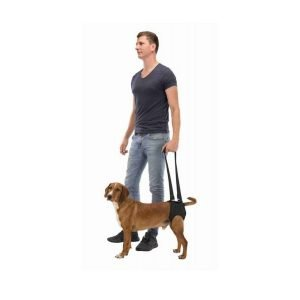 walking aid for dogs