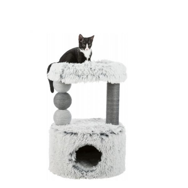 scratching post for cats