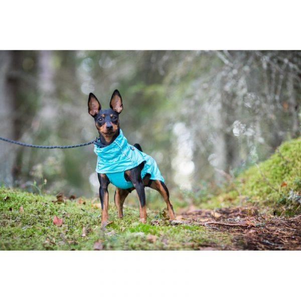 rain coat for dogs