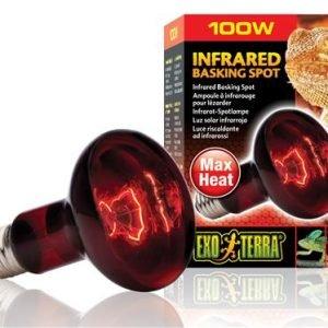 infrared basking pot