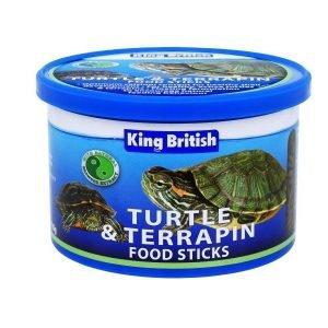 king british turtle