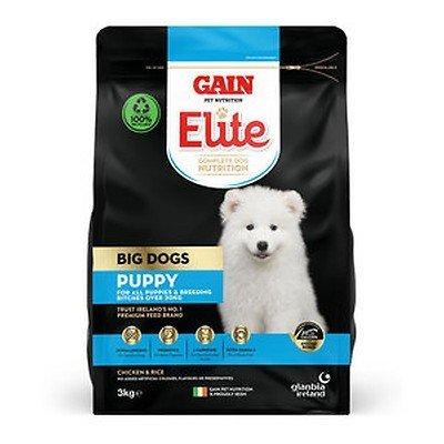 gain big dog puppy