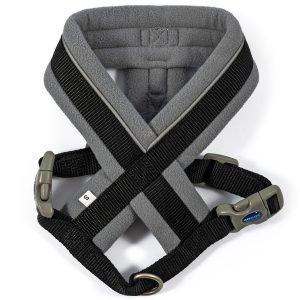 padded harness