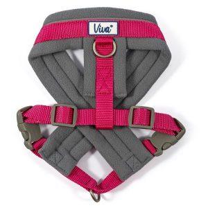 padded dog harness