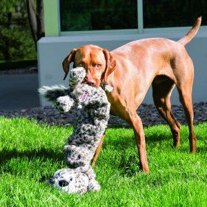 extra large dog toy