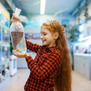 happy-little-girl-looking-on-goldfish-in-pet-store-XGJ8KWR